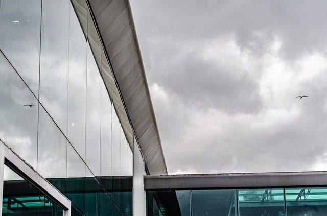 Vták letiaci okolo budovy s presklenou stenou.jpg